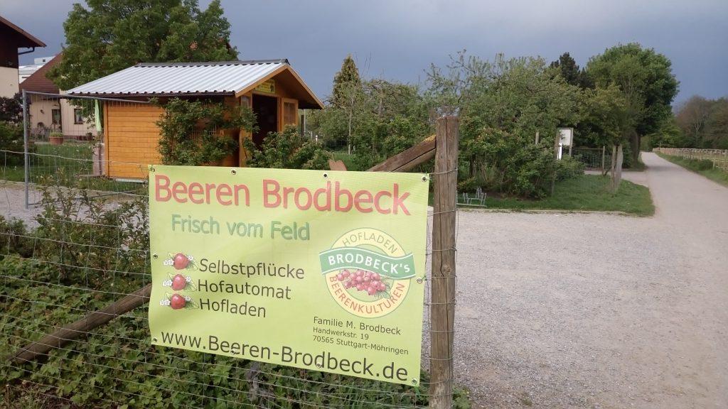 Beeren Brodbeck, Frisch vom Feld, Selbstpflücke Hofautomat Hofladen, Direktvermarktungsbetrieb mit dem Schwerpunkt Beerenobst